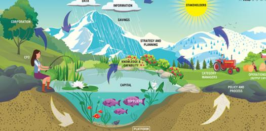 Interactions In An Ecosystem