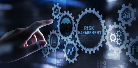 Business Quiz: Key Principle Of Risk Management Programs