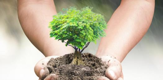 Environmental Science Interesting Quiz#1