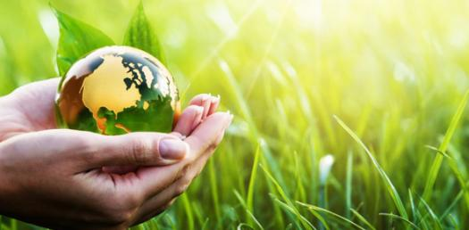Lets Know About Environmental Science Quiz