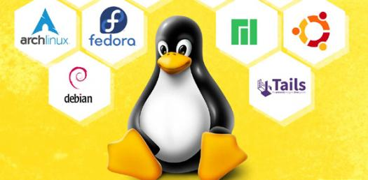 Test Your Knowledge About Linux Basics!