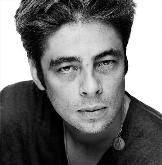 Are You Benicio Del Toro