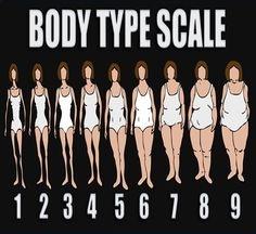 Bodies types of curvy Women's Body