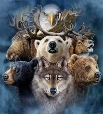 What Is My Spirit Animal?
