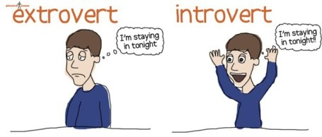Introvert or Extravert: Which are you?