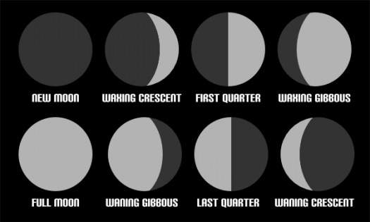 Which Phases Of The Moon You Are? - ProProfs Quiz