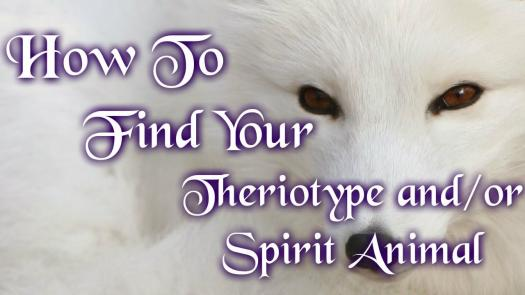 How To Find Your Spirit Animal?