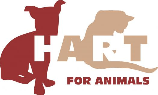 """Hart To Heart Questionnaire-""""Find Your Canine Match!"""""""