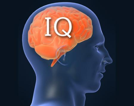 How To Know Your IQ?