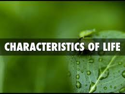 Six Characteristics Of Life