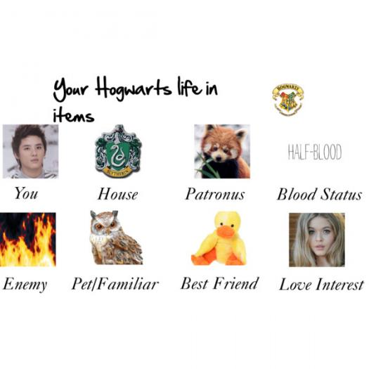 Your Hogwarts Life: Long Results + Girls Only(love Life