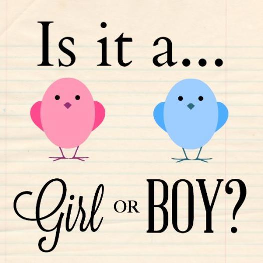 Gender Reveal Quiz #2