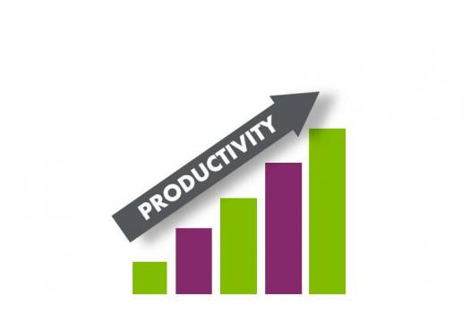 The Production Process - Improving Productivity