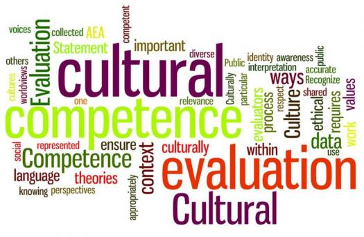 Cultural Competency Test