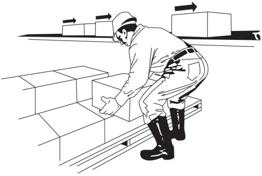 How Much Do You Know About Physical Ergonomics?
