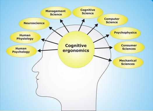 Cognitive Ergonomics Quiz