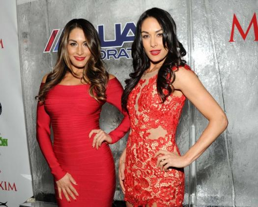 How Much Do You Know About Brie Bella?