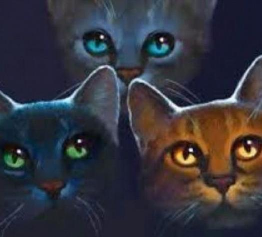 Which Warrior Cat Are You? Find Out In This Personality Quiz!