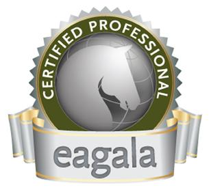 Eagala Post-Training Online Education and Assessment