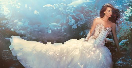 Which Disney Princess Wedding Gown Will You Like To Wear?