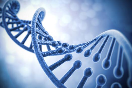 How Much Do You Know About The Central Dogma Of Molecular Biology?
