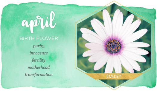 How Much Do You Know About Birth Flowers?