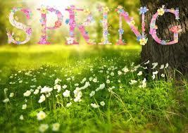 Spring Trivia!