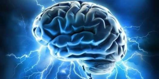 What Age Is Your Brain Really?