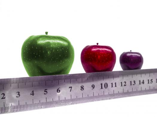 Does Size Matter: What Size Company Is Best For You?  Quiz!