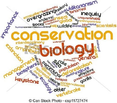 What Do You Know About Conservation Biology?