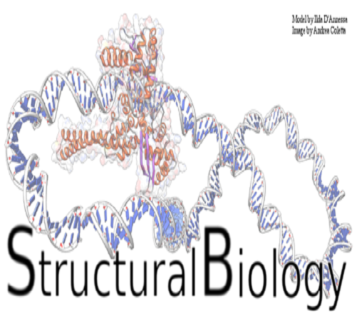 What Do You Know About Structural Biology?