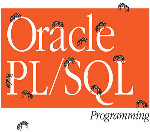 What Do You Know About Plsql Assessment Test?