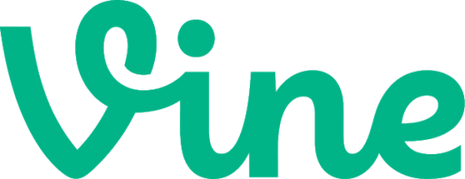 How Well Do You Know Vine Social Network?