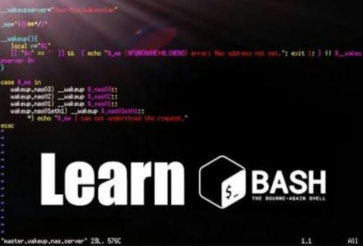 Bash Basic Programming Test - ProProfs Quiz