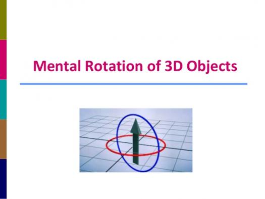 Spacial Relations And Mental Rotation Quiz