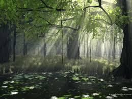 Starclan Or Dark Forest? - Warriors