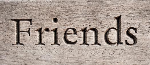 What Kind Of Friend Are You?`