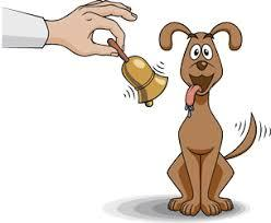 Classical Conditioning Theory Learning