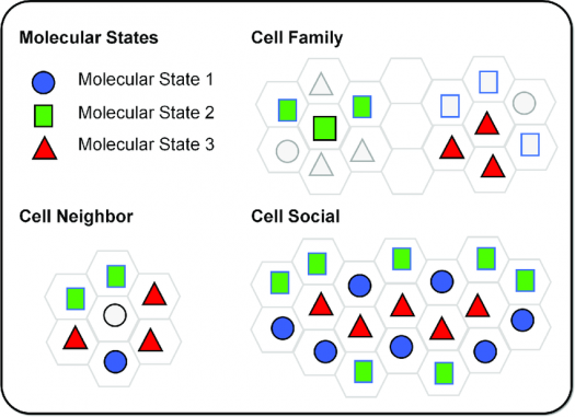 What Do You Know About Molecular State