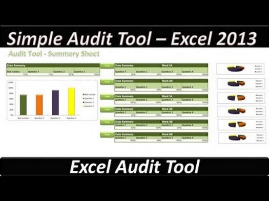 Auditor Excel Test