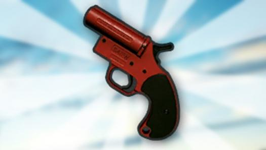 Do You Know Flare Gun?