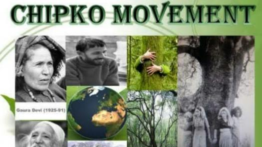What Do You Know About Chipko Movement?