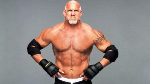 Are You Acquainted With Bill Goldberg?