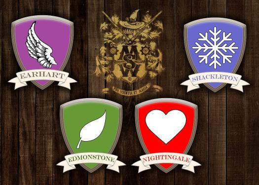 Which Msw House Do You Belong In?