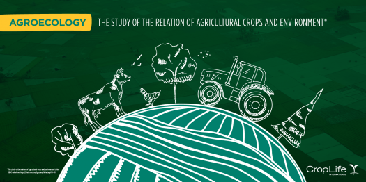 How Much Do You Know About Agroecology?