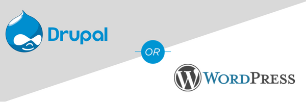 What Is Your Ideal CMS Platform?