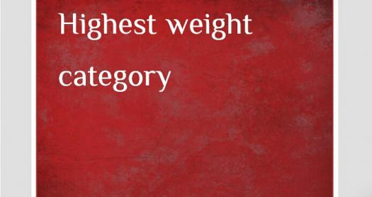 What Do You Know About Highest-weight Categories?