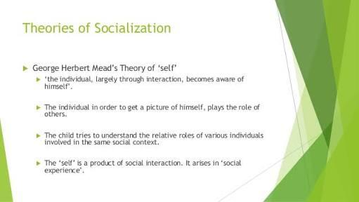 What Do You Know About Socialization Theories?