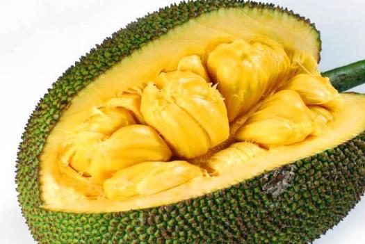 Jackfruit Trivia Quiz