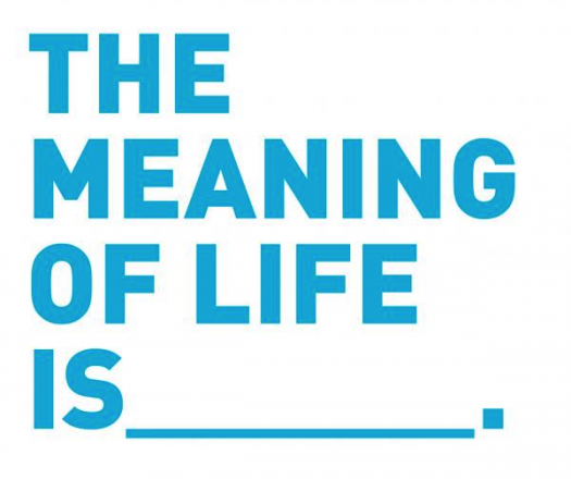 Meaning Of Life Survey